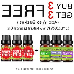 KIUNO 10ml Essential Oil 100% Pure & Natural Aromatherapy Ar