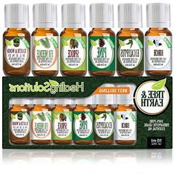 Top 6 Tree & Earth Essential Oils 100% Pure, Best Therapeuti