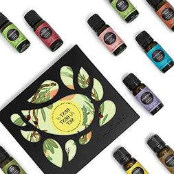 Beginners Best of the Best Aromatherapy Gift Set 12/10 ml