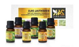 24K Organic Aromatic Essential Oil Set in 10 ml Bottles