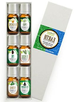 Healing Solutions Essential Earth Set 100% Pure, Best Therap