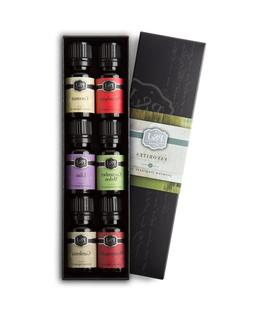 Fruit Set of 6 Premium Grade Fragrance Oils - Orange, Mango,