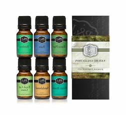 P&J Trading Nature Set of 6 Premium Grade Fragrance Oils - F