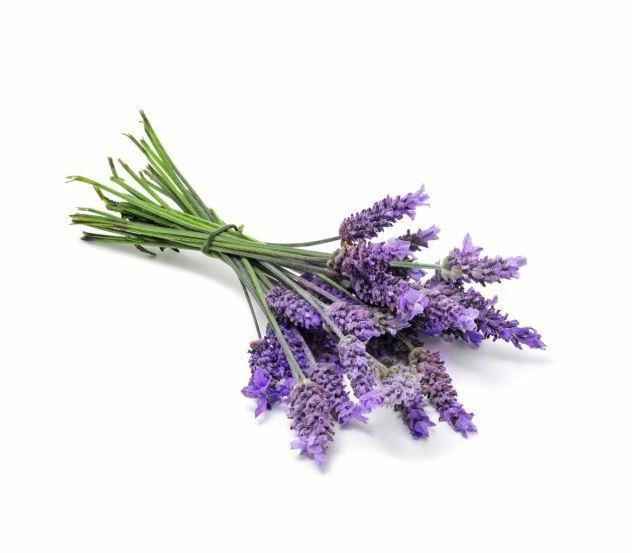 2 doTERRA Lavender Oil 15 ml Expiry 2023
