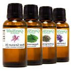 Green Health 30 mL  Essential Oils - Pure & All Natural - Ar