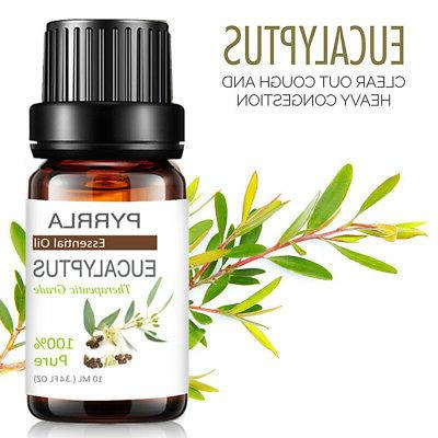 Aromatherapy Essential Oils Natural Fragrances US