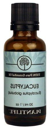 Eucalyptus 100% Pure essential Oil -30ml