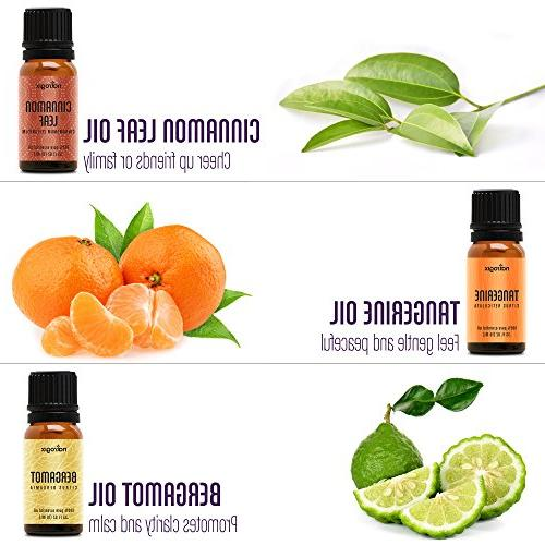 - Top Oil 100% Pure Therapeutic 18/10ml Lavender, Moroccan Tea Tree, Eucalyptus, Lemongrass and 13