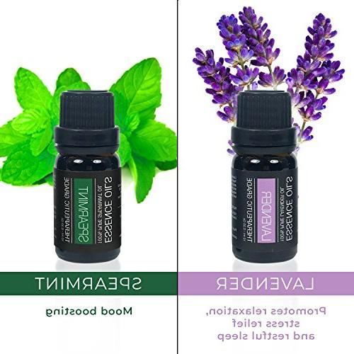 Pure Daily Care Aromatherapy Set - Ultrasonic & Top 10 Essential Oils 350ml Timer Ambient Light - Lavender