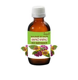 Lantana Camara Pure & Natural Essential Oil Lantana Camara b