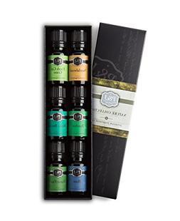 P&J Trading Nature Set of 6 Premium Grade Fragrance Oils - F